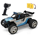 JELLY PLAY RC Racing Car for Kids,2.4Ghz High Speed Remote Control Car,1:18 2WD Toy Car with Two Rechargeable Batteries...