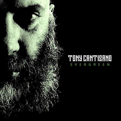 Tony Cantisano