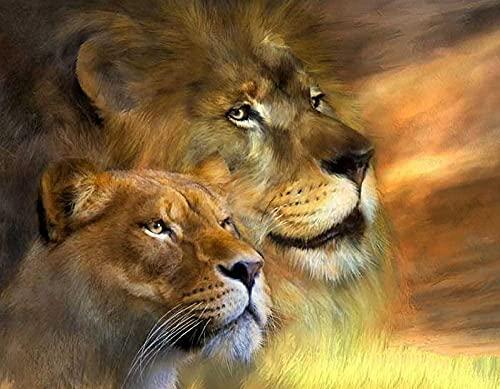 Dibujo bordado de pintura de diamante 5D DIY - Lion Big Cat Animal Needlework Regalo Full Diamond Mosaico punto de cruz Decoración del hogar 16 x 20 pulgadas