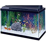All Glass Aquarium AAG10015 Tank Black, 15-Gallon