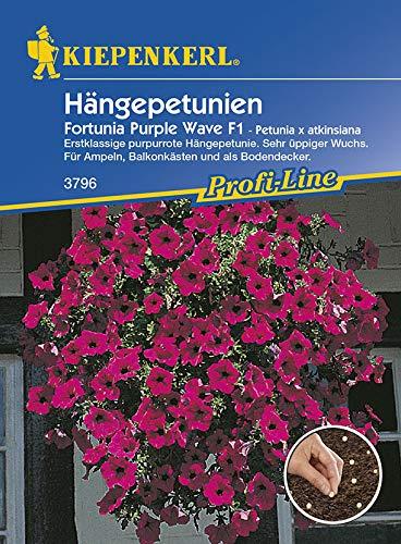 Kiepenkerl 3796 Hängepetunie Fortunia Purple Wave F1 (Pillensaat) (Hängepetuniensamen)