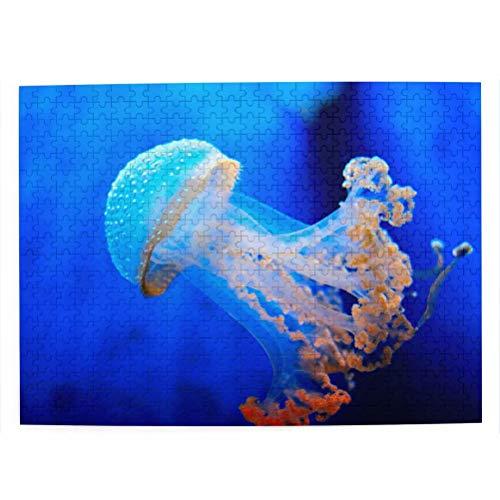 Italien Aquarium von Genua Afghanistan Puzzle für Erwachsene 500 Stück hölzernes Reisegeschenk Souvenir 20,4x15 Zoll