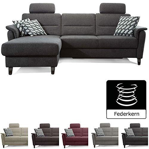Cavadore Ecksofa Palera mit Federkern / L-Form Sofa mit Longchair links / 244 x 89 x 164 / Stoff Dunkelgrau