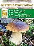 Boletus Edulis – Mycelium – Bosque de hongos – ¡Cultiva tus propios hongos!