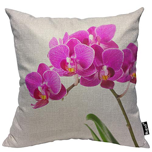 Mugod Dendrobium Throw Pillow Orchid Tropical Flowers Floral Elegant Pink Green White Cotton Linen Square Cushion Cover Standard Pillowcase 18x18 Inch for Home Decorative Bedroom/Living Room/Car