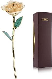 ZJchao Love Forever Long Stem 24k Gold Dipped Rose Flower, Love Gift to Wife, Mom, Girlfriend (White)