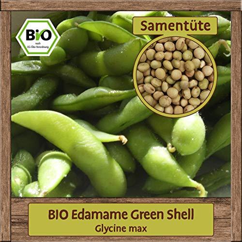 Samenliebe BIO Gemüse Samen Bohnen Green Shell (Glycine max) | BIO Bohnensamen Gemüsesamen | Samenfestes BIO Saatgut für 15 Pflanzen