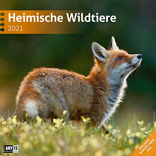 Heimische Wildtiere 2021, Wandkalender / Broschürenkalender im Hochformat (aufgeklappt 30x60 cm) - Kalender mit Monatskalendarium zum Eintragen