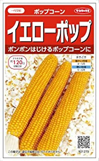 【種子】ポップコーン イエローポップ 20ml