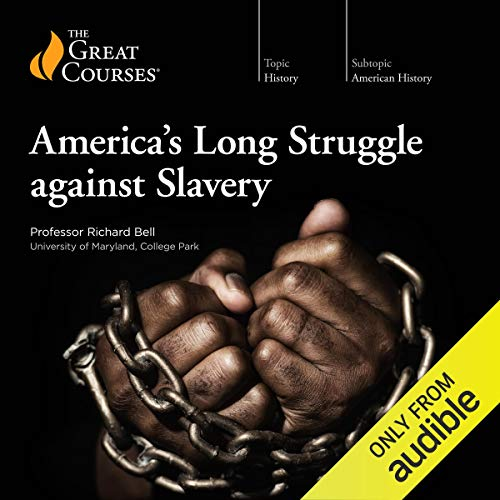 America's Long Struggle Against Slavery cover art