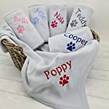 Crumbleberry Personalised Dog Cat Puppy Kitten Blanket Double Fleece (Small Light Grey 100 x 150cm)