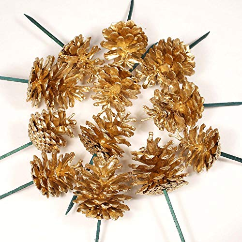 Green Floral Crafts - All Gold Small 2 inch Tall Pine Cones on 3 Ft Ft Stems, Pk of 16