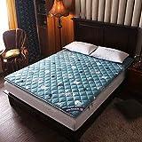 Materasso pieghevole futon giapponese Materassino imbottito portatile Tatami Doppio morbid...