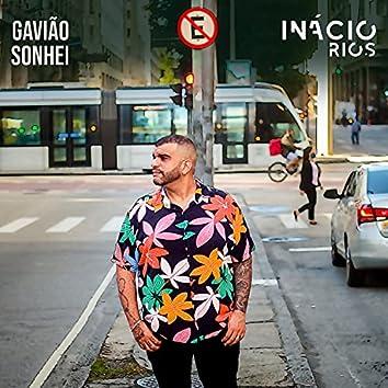 Gavião Sonhei