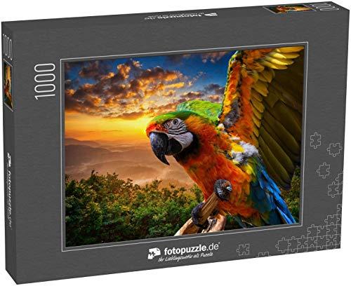 Puzzle 1000 Teile Papagei Vogel Hintergrund - Klassische Puzzle, 1000/200/2000 Teile, in edler Motiv-Schachtel, Fotopuzzle-Kollektion 'Tiere'