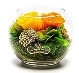 Rosen-Te-Amo Stilvoller Blumenstrauß aus 3 konservierte bunte Blumen in der Vase; Infinity Blumen...