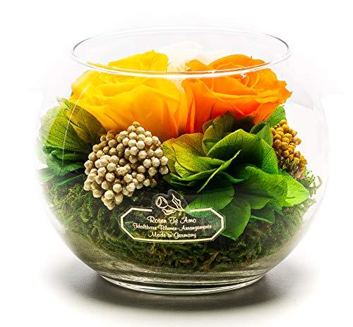 Rosen-Te-Amo Stilvoller Blumenstrauß aus 3 konservierte bunte Blumen in der Vase; Infinity Blumen im Glass: schön handgefertigt aus 100% echtes Bindegrün - 3 Jahre haltbar ohne Wasser