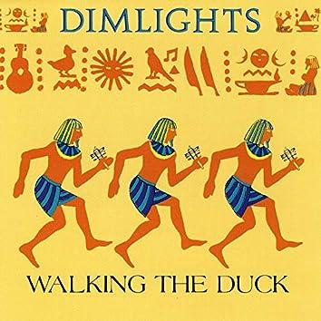 Walking the Duck