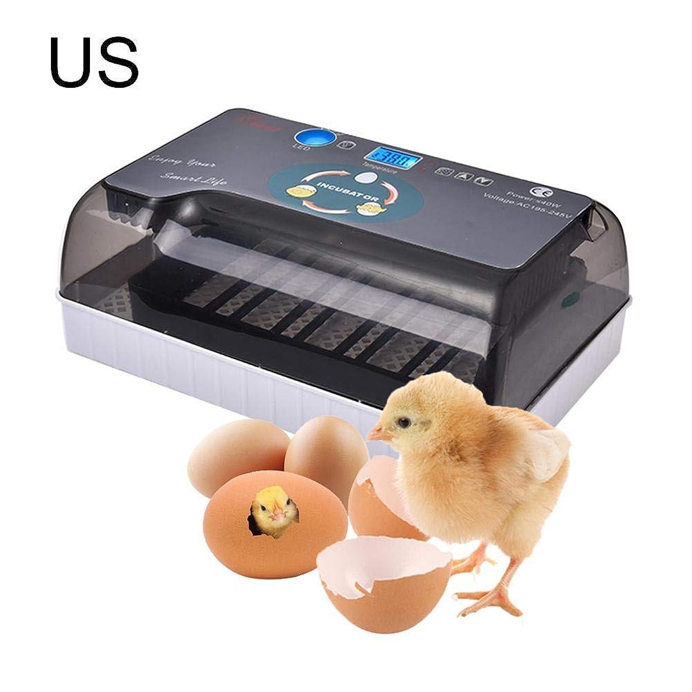 ワークショップ遠え石の自動孵卵器 インキュベーター 鳥類専用 孵化器 12個入卵OK 子供教育用 小型 自動温度制御 簡単操作 デジタル表示 インキュベーター卵インキュベーターデジタルディスプレイ自動孵化4-35チキン アヒル 鳥 七面鳥など 110V