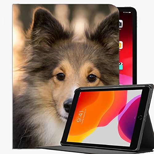 Custodia per iPad Mini 5/4 7.9 pollice Case Cover, Shetland Sheepdog Dog Case MUZZLE Custodia sottile per iPad Mini 7,9 pollici