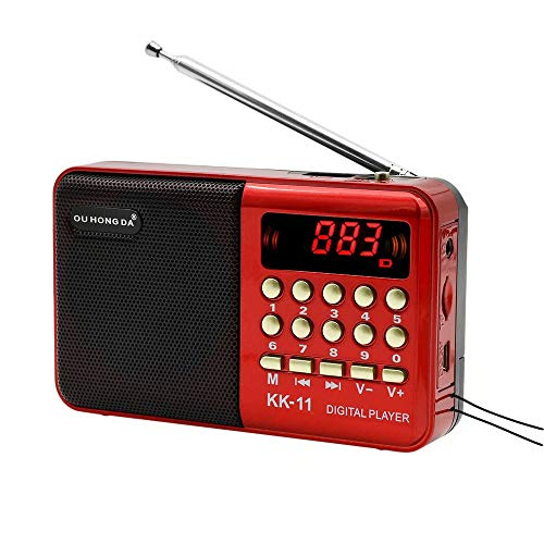 Paddsun Portable FM Radio Digital LCD Speaker MP3 Music Player Support Micro SD TF Card,Rechargeable USB and LED Light