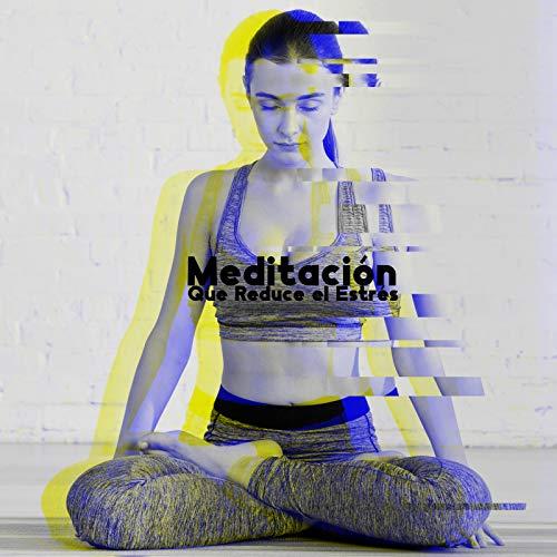 Meditación Que Reduce el Estrés - Escucha los Sonidos de la Música New Age y Logra una Profunda Armonía con tu Mente y Cuerpo, Oasis de Calma, Reflexiones Diarias