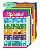 Kindergarten Supplies Review and Comparison