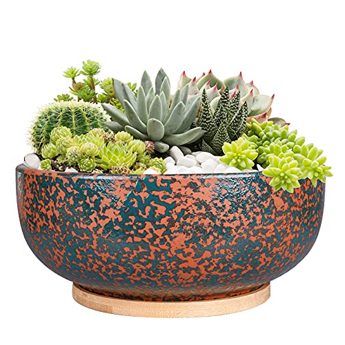 Fivepot 10 Inch Large Terracotta Planter Succulent Plant Bowl Deep Flower Pot Indoor and Outdoor Decor Drainage Bamboo Tray