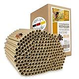 wildtier herz Kit Maison d'abeille - 200 Pièces Ø 8 mm, Ruche pour Abeilles, Maison Insectes - en Carton 100% Écologiques pour Les Hôtels à Insectes