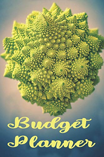 BUDGET PLANNER: Broccoflower fractal in Nature pattern Romanesco Monthly Bill Planner and Organizer | bill organizer budget planner book monthly | ... Finance Planning Workbook Maths in Nature