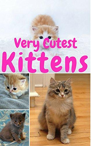 Cutest Kittens 1500 Picture Cutest Kittens Cats Photobook For Kids Lv 1 Baby Kittens Cats Dogs Cute Fluffy Animals For Children Cat Photobook Cat Bybee Cat School Cutest Kittens Pet An Ebook Cosmo Kitten