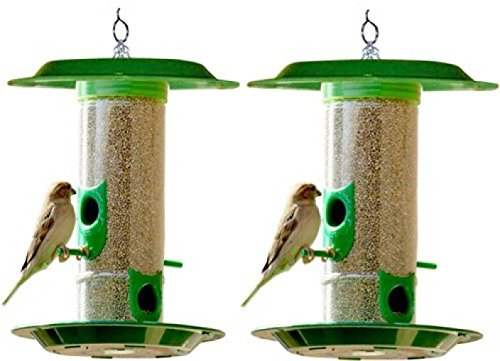 Amijivdaya Medium Bird Feeder with Hut Pack of 2