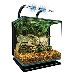 Starting A Fish Tank Guide (Buying,Setup,Care,Size) 1
