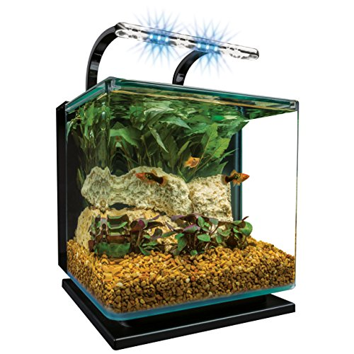 Marineland Contour 3 aquarium Kit 3 Gallons, Rounded Glass Corners, Includes LED Lighting