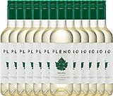 VINELLO 12er Weinpaket Weißwein - Pleno Blanco DO 2020 - Bodegas Agronavarra mit einem VINELLO.weinausgießer | trockener Weißwein | spanischer Weißwein aus Aragonien | 12 x 0,75 Liter