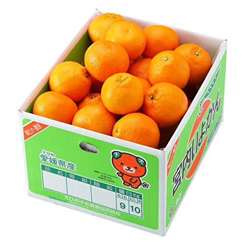 みかん 宮内伊予甘 〇等級 4L〜3Lサイズ 9kg JAえひめ中央 中島産 ミカン 蜜柑 いよかん