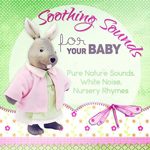 Hush Hush, Baby Box Music with Bear