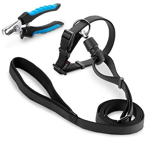 GOLEYGO Halsband & Hundeleine Flat M 140-200cm mit Magnet-klick-System – inkl. Adapter Pin – Premium Leine große Hunde & kleine Hunde + Krallenschere geschenkt