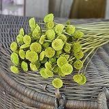 Fiori secchi naturali, 30 pz/bouquet Craspedia Billy bottoni fiori naturali secchi bouquet floreale, per matrimoni, casa, hotel, decorazioni fai da te