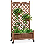Best Choice Products 48in Wood Planter Box & Diamond Lattice Trellis, Mobile Outdoor Raised Garden Bed for Climbing… 8 DIAMOND LATTICE: A 48-inch trellis is woven in a tight, diamond pattern to provide structural support and plenty of space for climbing plants PLANTER BOX: Fill the 10-inch deep box with your favorite potted plants and a water-resistant liner (not included) or a fresh soil bed thanks to built-in drainage holes OPTIONAL WHEELS: A set of 4 included wheels can easily attach for added mobility and come with two locks for stability