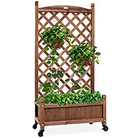 Best Choice Products 48in Wood Planter Box & Diamond Lattice Trellis, Mobile Outdoor Raised Garden Bed for Climbing… 3 DIAMOND LATTICE: A 48-inch trellis is woven in a tight, diamond pattern to provide structural support and plenty of space for climbing plants PLANTER BOX: Fill the 10-inch deep box with your favorite potted plants and a water-resistant liner (not included) or a fresh soil bed thanks to built-in drainage holes OPTIONAL WHEELS: A set of 4 included wheels can easily attach for added mobility and come with two locks for stability