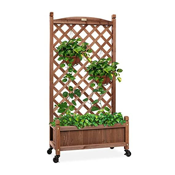 Best Choice Products 48in Wood Planter Box & Diamond Lattice Trellis, Mobile Outdoor Raised Garden Bed for Climbing… 1 DIAMOND LATTICE: A 48-inch trellis is woven in a tight, diamond pattern to provide structural support and plenty of space for climbing plants PLANTER BOX: Fill the 10-inch deep box with your favorite potted plants and a water-resistant liner (not included) or a fresh soil bed thanks to built-in drainage holes OPTIONAL WHEELS: A set of 4 included wheels can easily attach for added mobility and come with two locks for stability