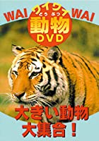 DVD 大きい動物大全集