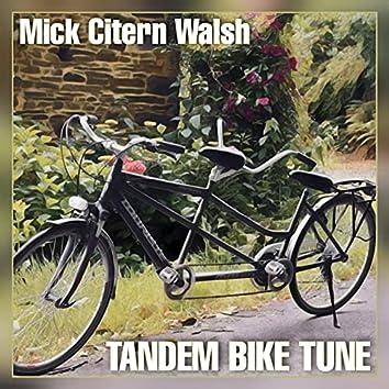 Tandem Bike Tune