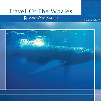 Chlorophylle II Travel of the Whales (Relaxing Zen Nature)