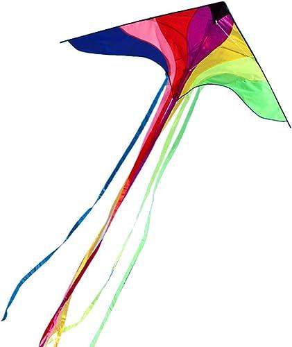 AYLS Cerfs-Volants à Longue Queue, Motifs d'oiseaux Couleurés avec Bobbin Breeze Facile à Voler, Cerfs-Volants, Jouet Volant Adulte, 230  390CM