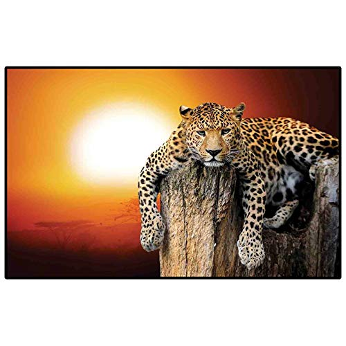 Safari Decor Hallway Rug Kids Rug Nursery Rug Leopard Sitting on Dry Tree at Sunset Danger in The Air Big Cat with Spotted Form Image Indoor-Outdoor Carpet Orange Brown 3 x 5 Ft