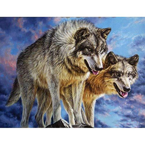 Diopn 5D Diamant Schilderij DIY Wolf Schilderij Strass Borduren Wolf (Rond Diamant 30 * 40) 30 * 40