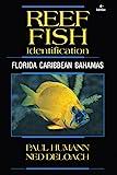 Reef Fish Identification - Florida Caribbean...