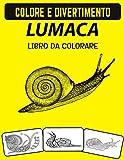 Libro da colorare di lumaca: Libro da colorare fantastico animale di mare lumaca